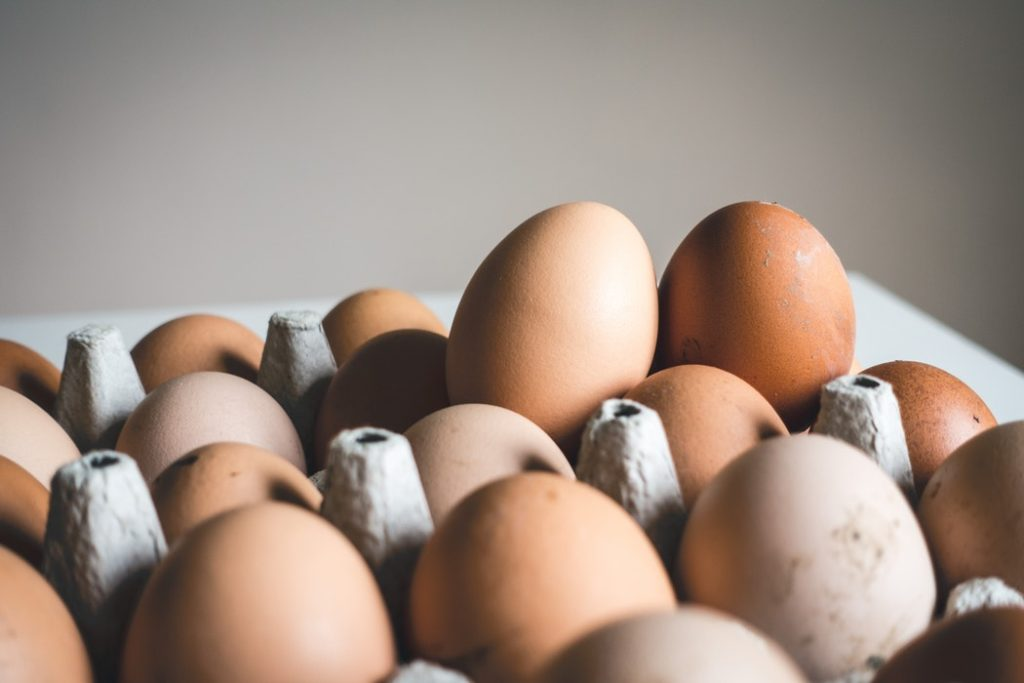 eggs are one of the best foods for weight loss